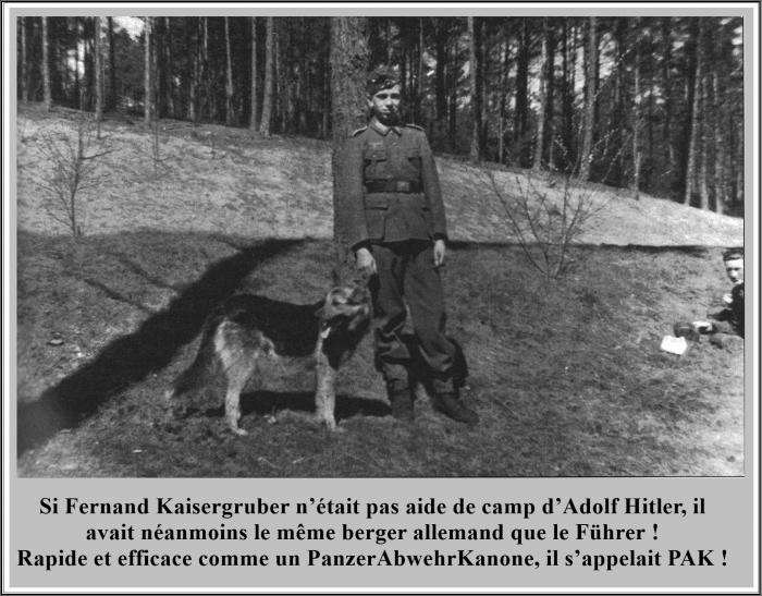 Fernand chien.jpg